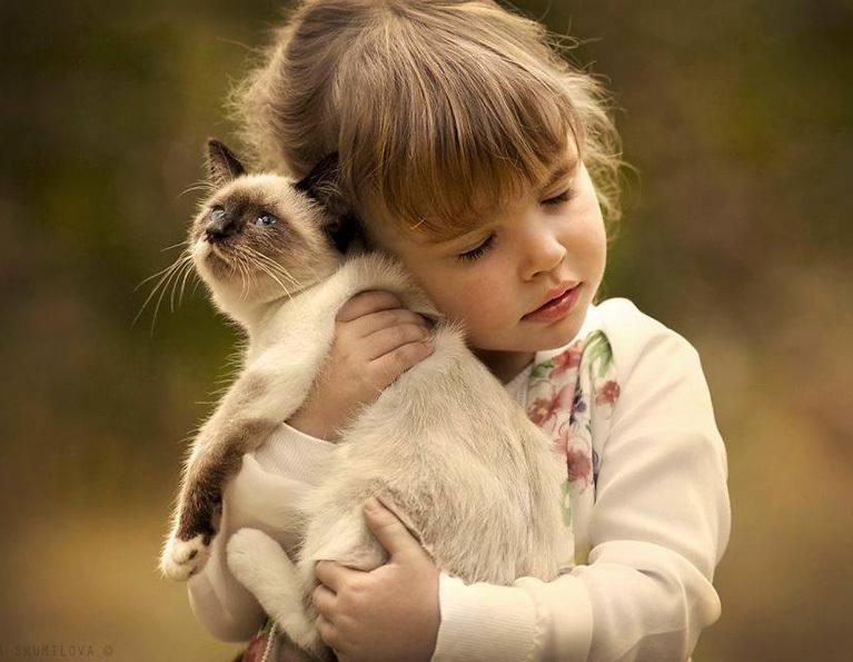 Rapporto Gatto E Bambino Io E Il Mio Animale