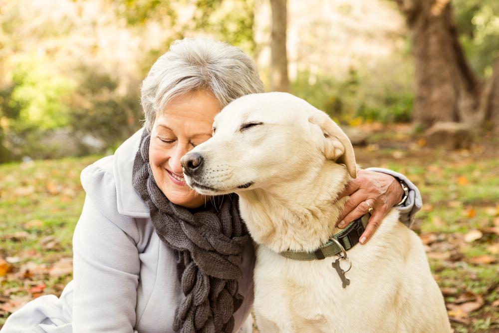 Le 20 Migliori Razze Di Cani Per Pensionati Io E Il Mio Animale